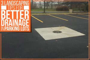 3 Landscaping Tips For Better Drainage In Parking Lots