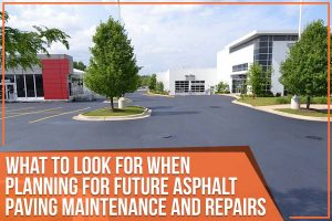 What To Look For When Planning For Future Asphalt Paving Maintenance And Repairs